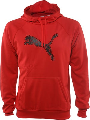Puma Mens Fall Training Hoodie
