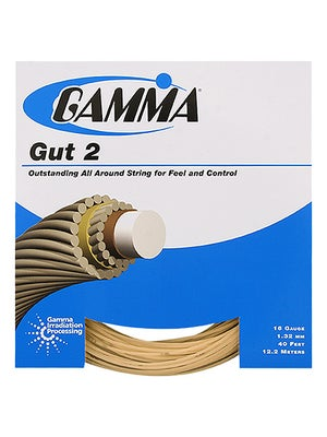 Gamma Gut 2 String