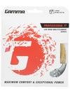 Gamma Live Wire Professional 17 String